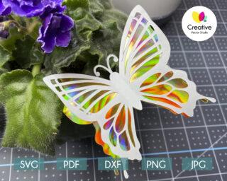 3D Butterfly SVG #3 Cutting Template